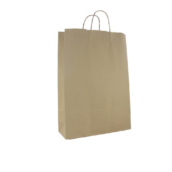 Large Brown Paper Carry Bags
