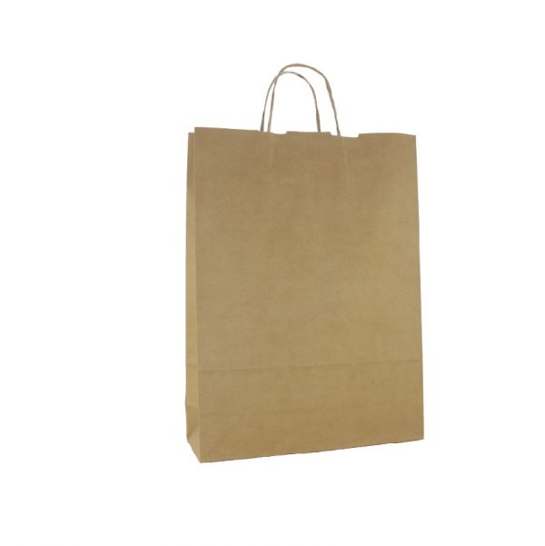 Medium Brown Paper Carry Bags