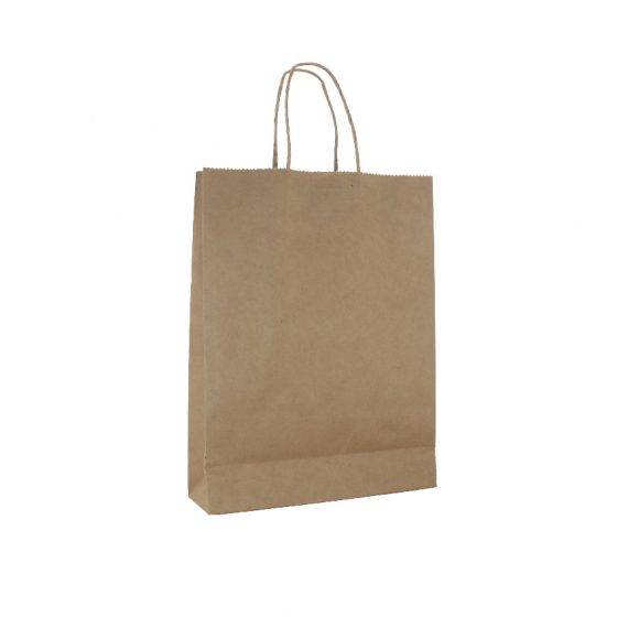 Small Brown Paper Carry Bags